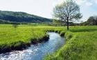 Entretien des cours d'eau